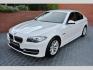 BMW Řada 5 520d xDrive LUXURY,BI-XENON,NA